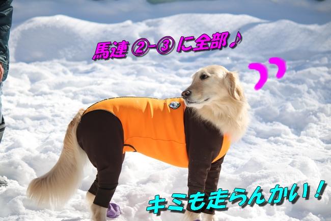 雪遊び2016 1165