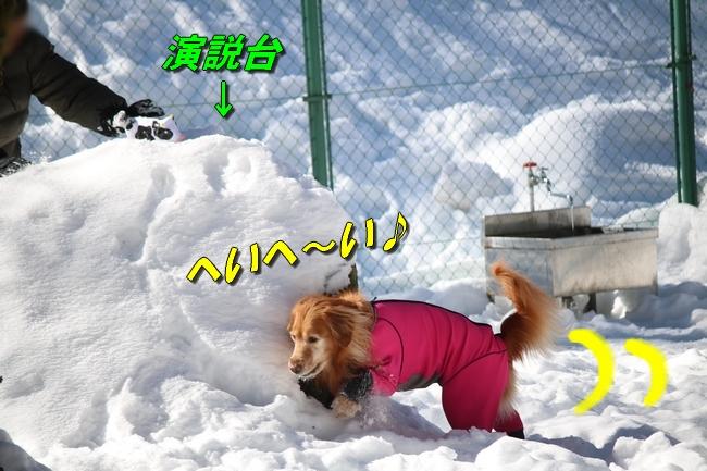 雪遊び2016 1264