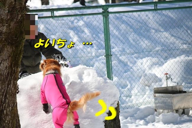 雪遊び2016 1266