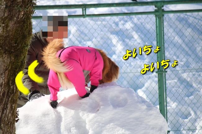 雪遊び2016 1270