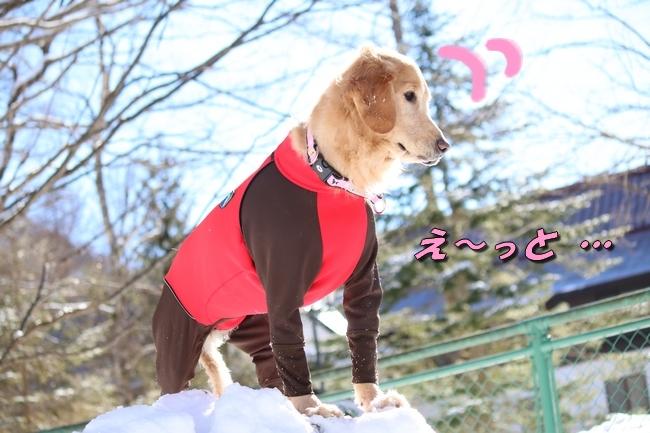 雪遊び2016 1360