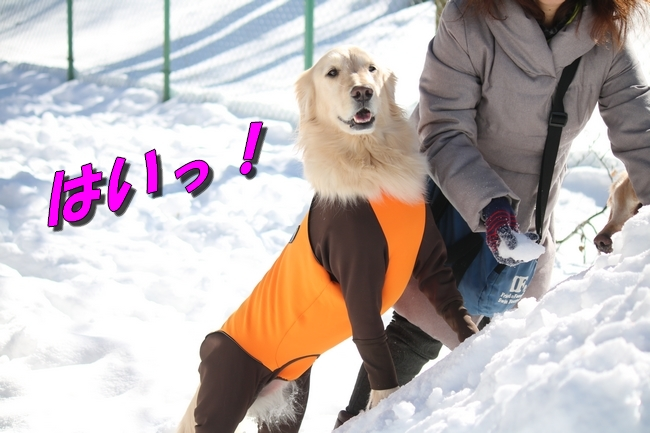 雪遊び2016 1414