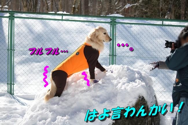 雪遊び2016 1423