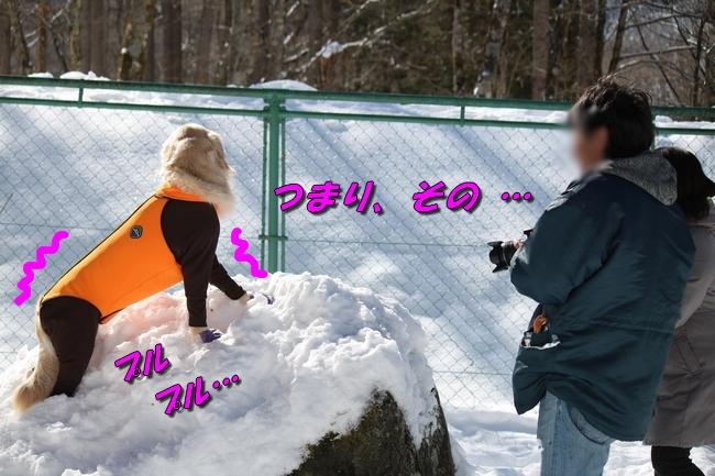 雪遊び2016 1424