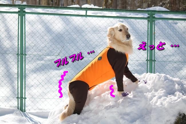 雪遊び2016 1425