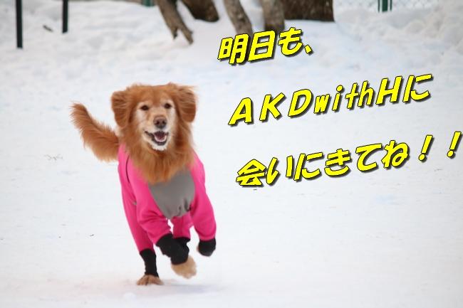 雪遊び2016 210