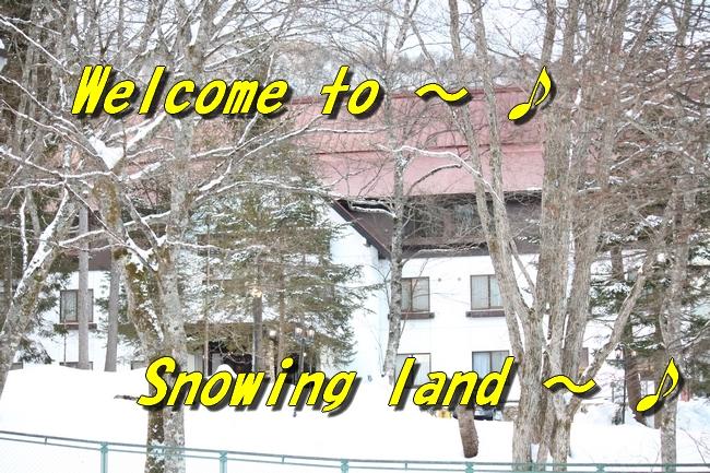 雪遊び2016 335