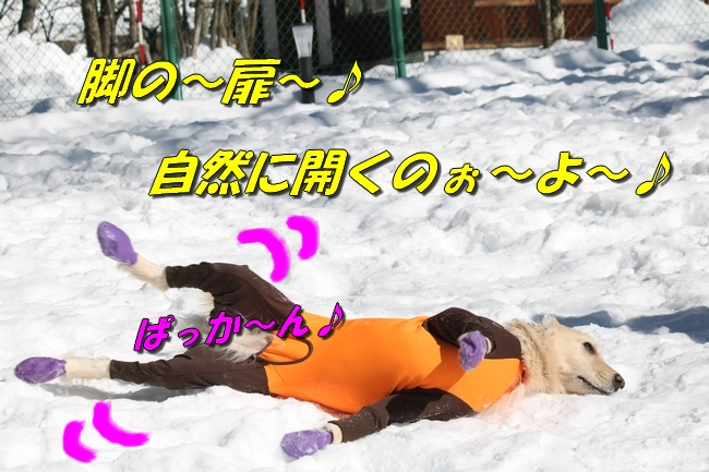 雪遊び2016 1041