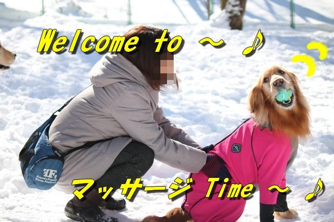 雪遊び2016 1178