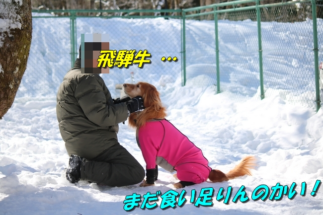 雪遊び2016 1510