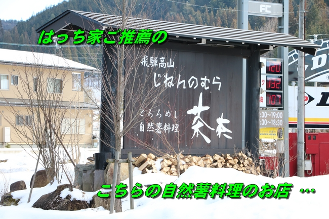 雪遊び2016 1722