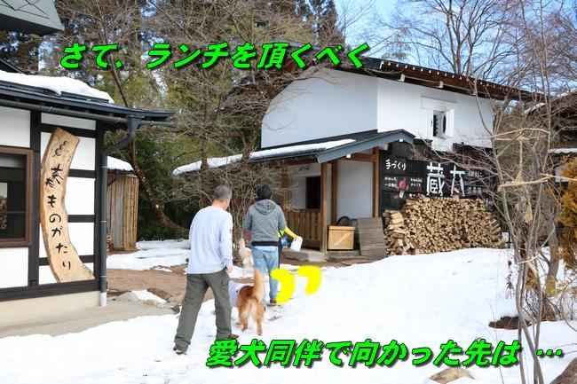 雪遊び2016 1747