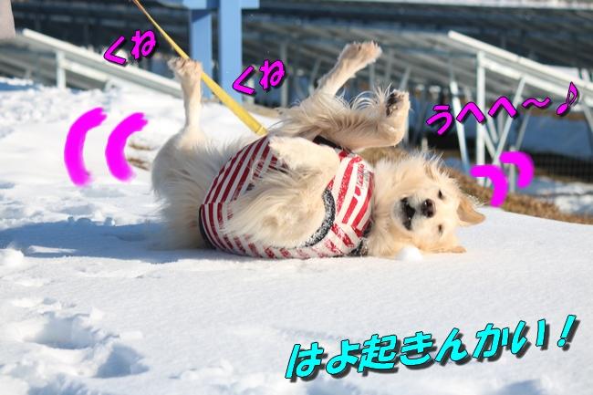 雪遊び2016 1943