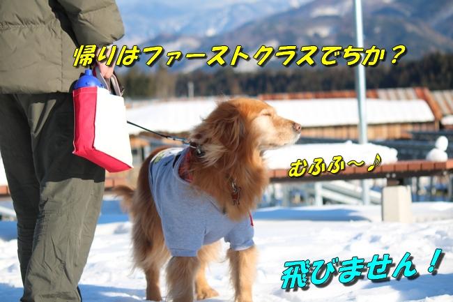 雪遊び2016 2007