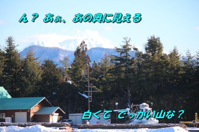 雪遊び2016 1976