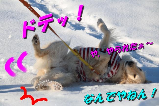 雪遊び2016 1985