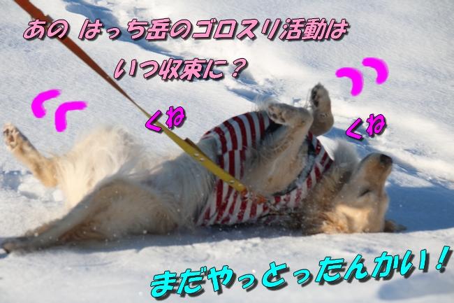 雪遊び2016 1986