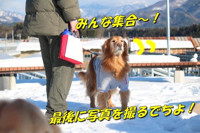 雪遊び2016 2008