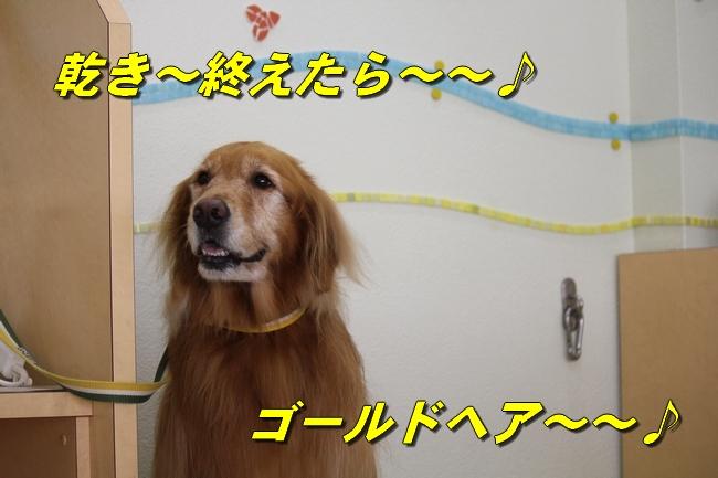 プール&旭化成謝罪 107