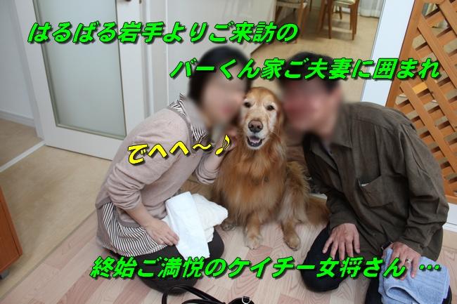 バーくん家 011