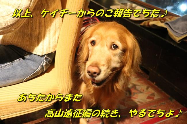 666_20160210213237c83.jpg