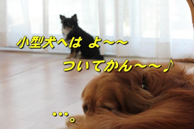 MarichanMeronkun013.jpg