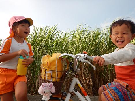 宮古島 子育て 自転車