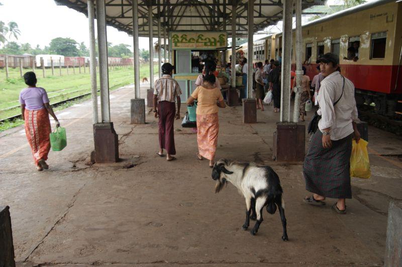 ミャンマ―鉄道