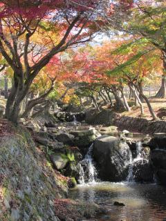 奈良 白蛇川