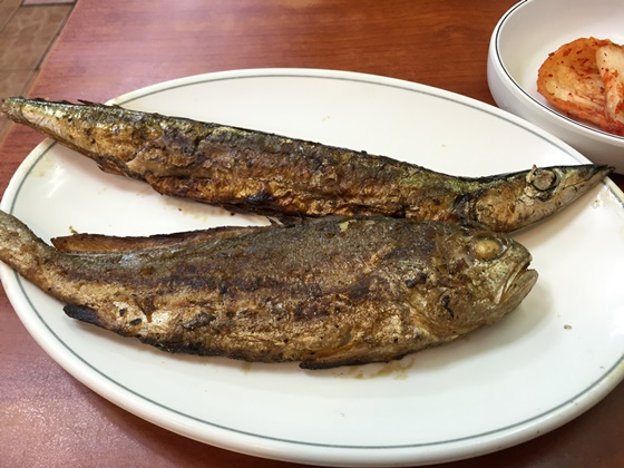 151226fish (15)