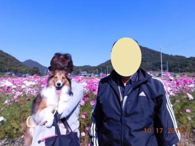 097-1_convert_20151115234927.jpg