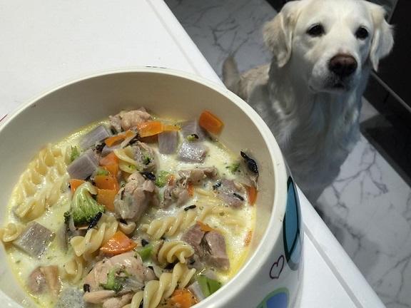 鶏肉と根菜の和風シチュージュディー用