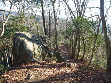 登山道の大黒岩