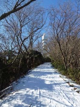 登山道から見る電波塔