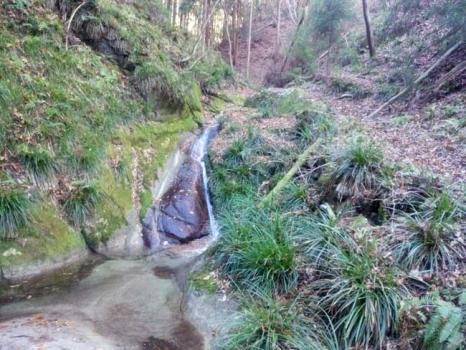 沢コースの小さな滝