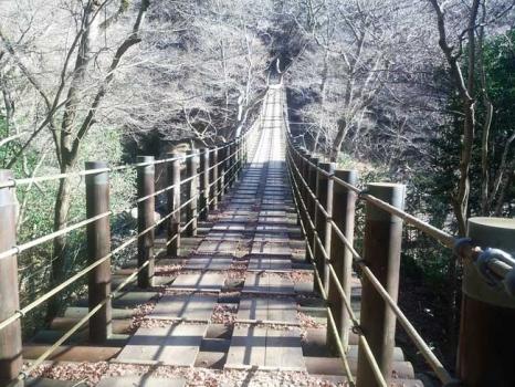 花貫渓谷にかかる「汐見滝」