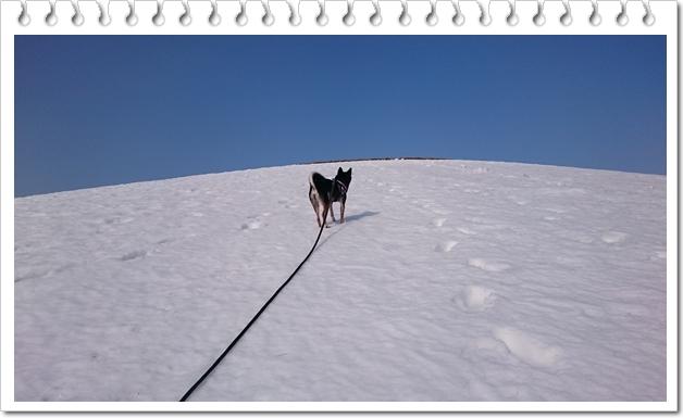 モエレ山③