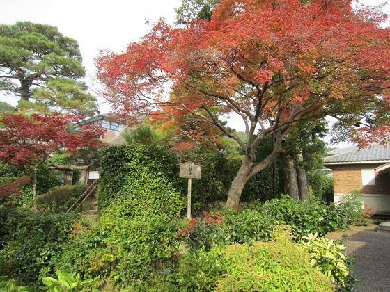 岩倉具視旧宅の紅葉