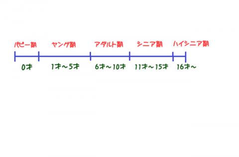 わんこ期2016021400