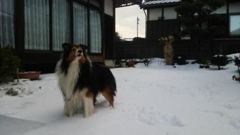 雪もんど4