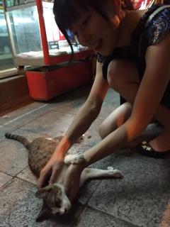 初日に出会った猫との再会②