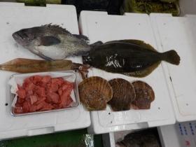 3鮮魚セット20151230