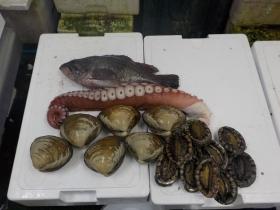 4鮮魚セット20151230