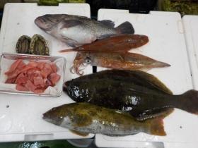 6鮮魚セット20151230