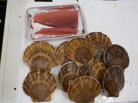 13鮮魚セット20151230