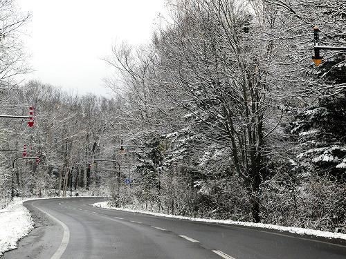 s-小雪舞う街道