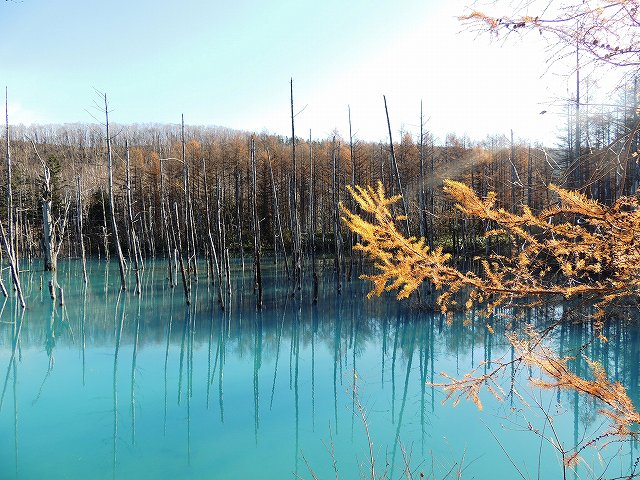 s-青い池。