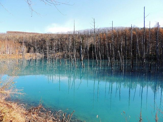 s-白金 青い池