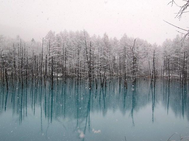 s-青い池11月10日