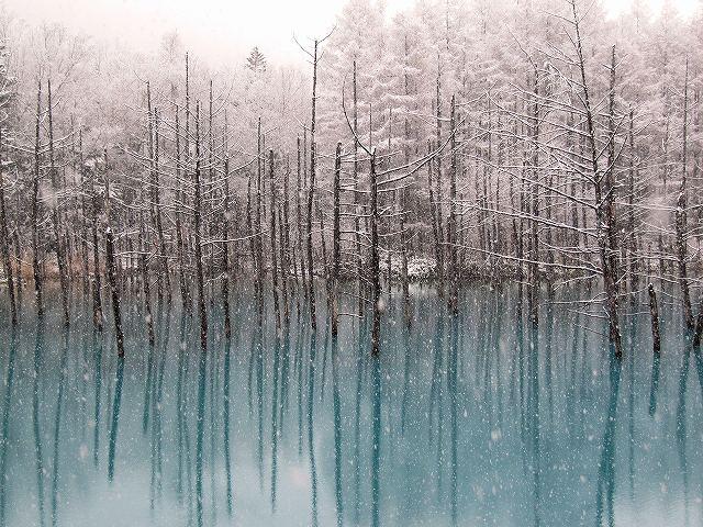 s-雪と青い池